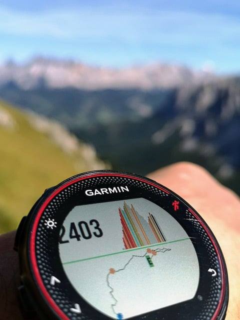 Garmin watch Altimeter