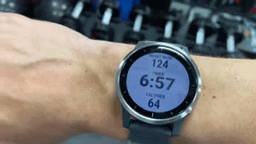 Garmin Watch iPhone