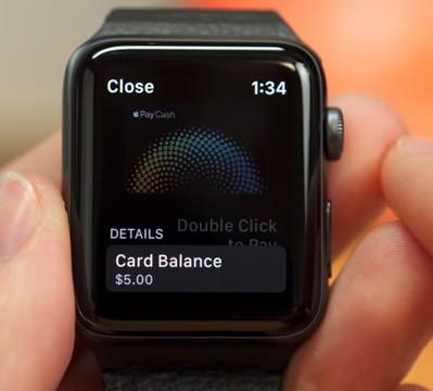 Apple Watch Safe